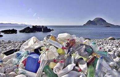 « Restitution de l'Etat des lieux de la gestion des déchets d'activité économique de MTPM »